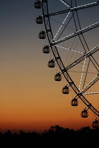 夕暮れ時の葛西臨海公園の観覧車の写真素材 [FYI01227824]