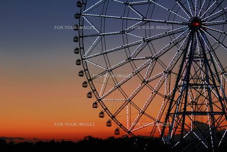 夕暮れ時の葛西臨海公園の観覧車の写真素材 [FYI01227827]