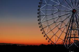 夕暮れ時の葛西臨海公園の観覧車の写真素材 [FYI01227828]