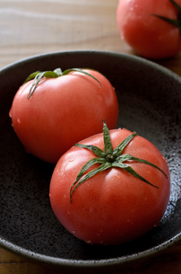 トマトの写真素材 [FYI01227853]