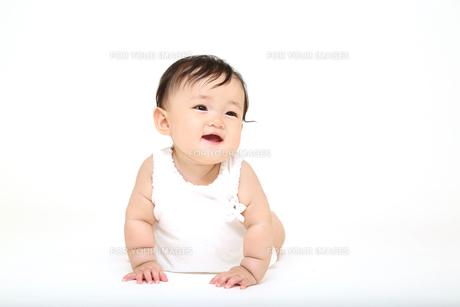 屋内白バックでハイハイする新生児の赤ちゃん。新生児、赤ちゃん、育児、健康、愛、幸せイメージの写真素材 [FYI01227896]