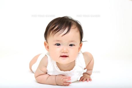 屋内白バックでハイハイする新生児の赤ちゃん。新生児、赤ちゃん、育児、健康、愛、幸せイメージの写真素材 [FYI01227898]