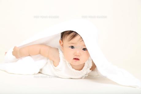 屋内白バックでハイハイする新生児の赤ちゃん。新生児、赤ちゃん、育児、健康、愛、幸せイメージの写真素材 [FYI01227899]