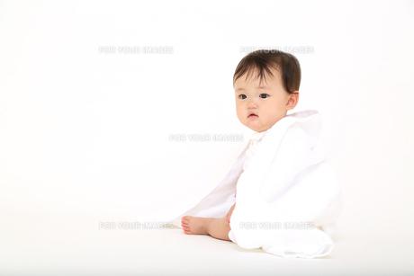 白背景の前でバスタオルを被り遊ぶ女の子の赤ちゃん。乳幼児、健康、元気、成長、育児、幸せイメージの写真素材 [FYI01227907]
