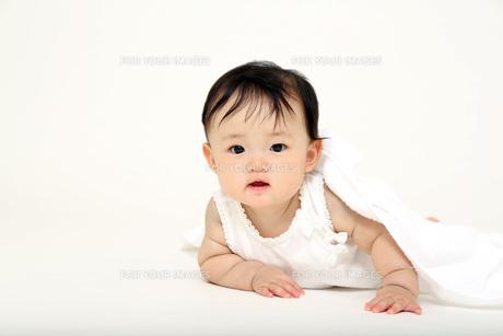 屋内白バックでハイハイする新生児の赤ちゃん。新生児、赤ちゃん、育児、健康、愛、幸せイメージの写真素材 [FYI01227908]