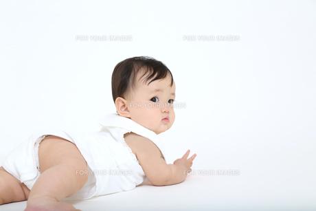 白バックでハイハイする1人の女の子の赤ちゃんの写真素材 [FYI01227947]