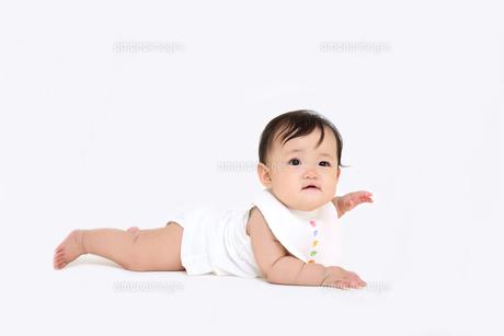 白バックでハイハイする1人の女の子の赤ちゃんの写真素材 [FYI01227949]