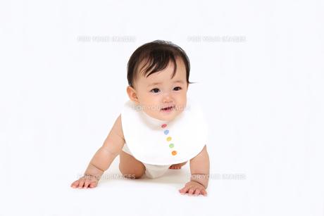 屋内白バックでハイハイする新生児の赤ちゃん。新生児、赤ちゃん、育児、健康、愛、幸せイメージの写真素材 [FYI01227964]