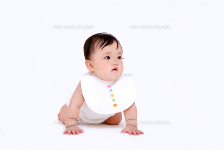 屋内白バックでハイハイする新生児の赤ちゃん。新生児、赤ちゃん、育児、健康、愛、幸せイメージの写真素材 [FYI01227965]