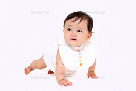 屋内白バックでハイハイする新生児の赤ちゃん。新生児、赤ちゃん、育児、健康、愛、幸せイメージの写真素材 [FYI01227967]