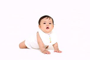 屋内白バックでハイハイする新生児の赤ちゃん。新生児、赤ちゃん、育児、健康、愛、幸せイメージの写真素材 [FYI01227968]