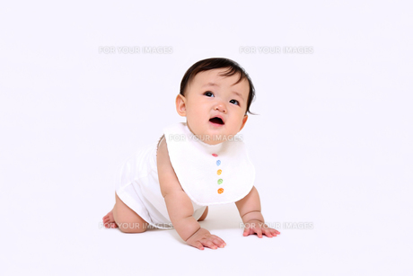 屋内白バックでハイハイする新生児の赤ちゃん。新生児、赤ちゃん、育児、健康、愛、幸せイメージの写真素材 [FYI01227969]