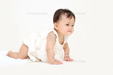 屋内白バックでハイハイする新生児の赤ちゃん。新生児、赤ちゃん、育児、健康、愛、幸せイメージの写真素材 [FYI01227975]