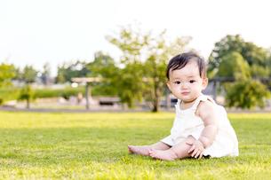 屋外の緑地でお座りする女の子の赤ちゃん。新生児、育児、健康、成長イメージの写真素材 [FYI01227996]