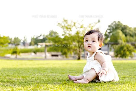 屋外の緑地でお座りする女の子の赤ちゃん。新生児、育児、健康、成長イメージの写真素材 [FYI01227997]