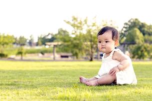 屋外の緑地でお座りする女の子の赤ちゃん。新生児、育児、健康、成長イメージの写真素材 [FYI01227998]