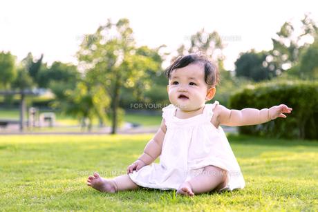 屋外の緑地でお座りする女の子の赤ちゃん。新生児、育児、健康、成長イメージの写真素材 [FYI01228001]