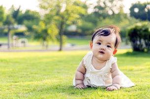 屋外の緑地でハイハイする赤ちゃん。新生児、育児、健康、成長イメージの写真素材 [FYI01228003]