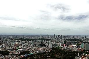 東京新宿の都市景観の写真素材 [FYI01228187]