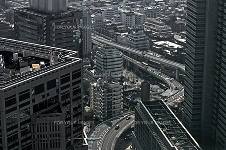 東京新宿の都市景観の写真素材 [FYI01228196]