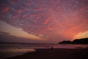 空を覆ううろこ雲がオレンジ色に染まった美しい海岸風景の写真素材 [FYI01228319]