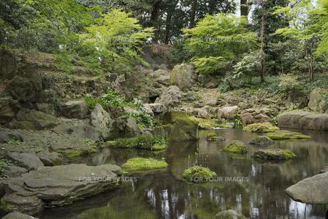 六義園の滝見茶屋から見た三尊石、枕流洞と水分石の写真素材 [FYI01228485]