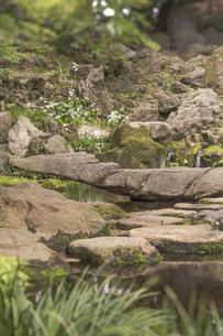 六義園の滝見茶屋から見た三尊石、枕流洞と水分石の写真素材 [FYI01228487]