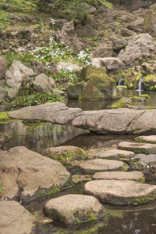 六義園の滝見茶屋から見た三尊石、枕流洞と水分石の写真素材 [FYI01228488]