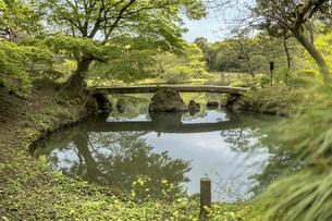 六義園の大泉水を渡る渡月橋の写真素材 [FYI01228497]