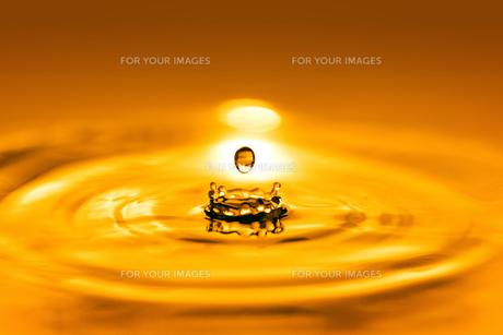 黄金色の水滴の写真素材 [FYI01228524]