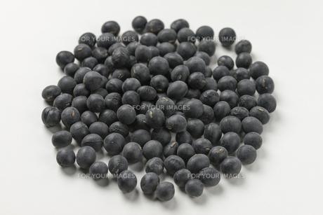 黒豆の写真素材 [FYI01228870]