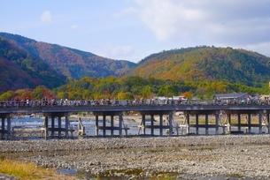 京都・嵐山の写真素材 [FYI01229025]