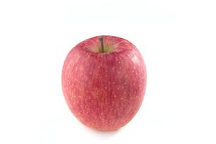 りんご ふじの写真素材 [FYI01229057]