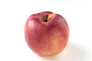 りんご こうとくの写真素材 [FYI01229064]