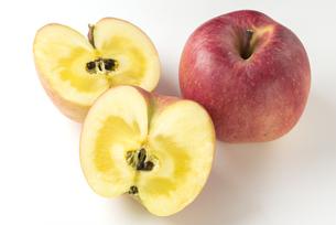 りんご こうとくの写真素材 [FYI01229066]