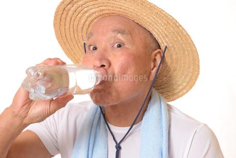 水分補給をするシニアの写真素材 [FYI01229208]
