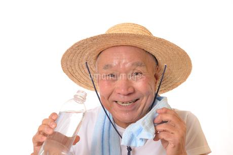 水分補給をするシニアの写真素材 [FYI01229210]
