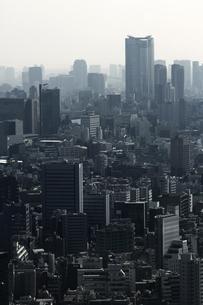 グレー一色のモノクロシティ東京の写真素材 [FYI01229803]