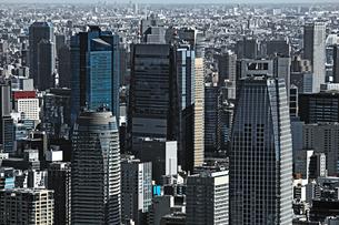 様々な建物が並ぶ東京の風景の写真素材 [FYI01229808]