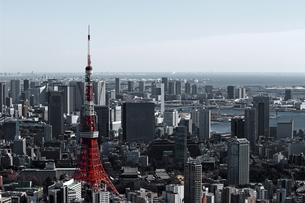 東京タワーと東京の風景の写真素材 [FYI01229809]