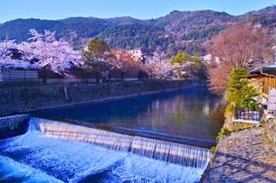 京都嵐山、春の桜咲く中ノ島橋から見る風景の写真素材 [FYI01229820]