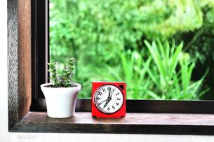 窓辺に置いた目覚まし時計と多肉植物の写真素材 [FYI01230011]