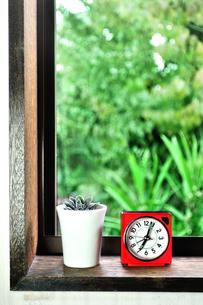 窓辺に置いた目覚まし時計と多肉植物の写真素材 [FYI01230012]