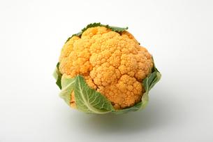 オレンジ色のカリフラワーの写真素材 [FYI01230219]