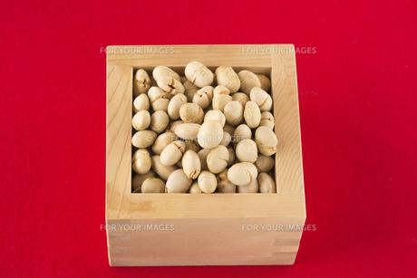 炒り大豆の写真素材 [FYI01230374]