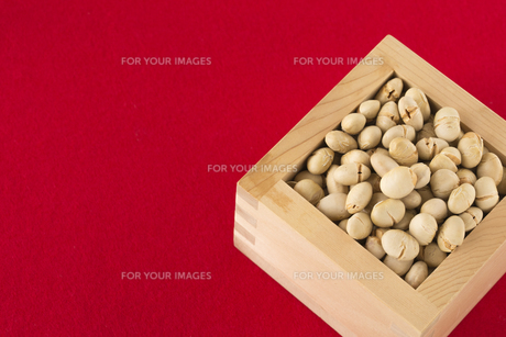 炒り大豆の写真素材 [FYI01230375]