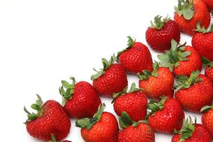 イチゴの写真素材 [FYI01230379]