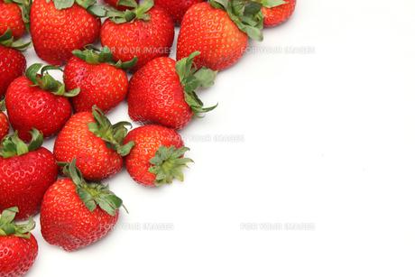 イチゴの写真素材 [FYI01230384]