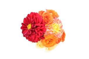 ダリアと薔薇の花束の写真素材 [FYI01230444]