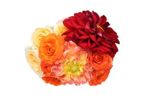 ダリアと薔薇の花束の写真素材 [FYI01230445]